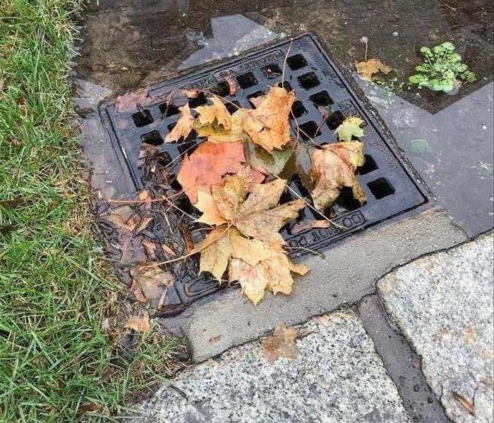 Clean Your Gutter And Drains Before