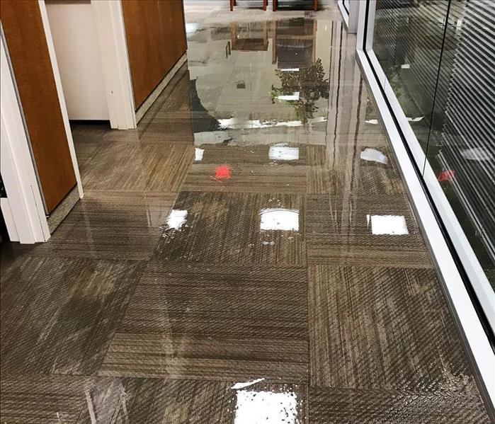 Coffee Maker Supply Line Leak Causes Commercial Water Damage in Fairfield, CT Before